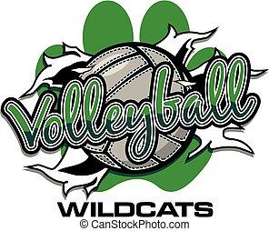 wildcats, röplabda