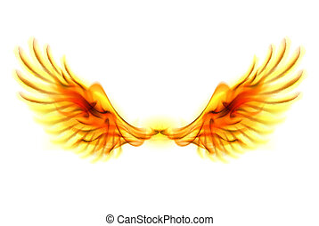 wings., elbocsát