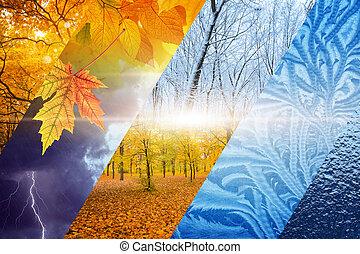 winter., havibaj, concept., előre lát, időjárás, bukás