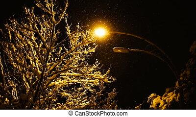 winter., utca, tél, éjszaka