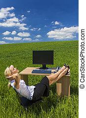 woman ellankad, hivatal, ügy, mező, zöld asztal