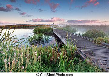 woodem, tó víz, bicikli út, napkelte