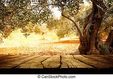 wooden asztal, olajbogyó fa