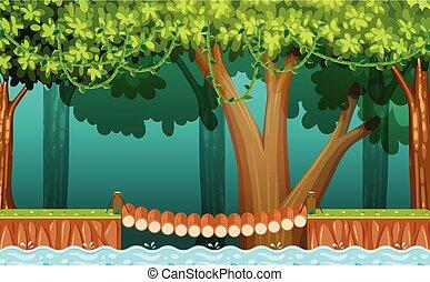 wooden bridzs, erdő