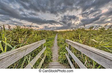 wooden bridzs, gyalogló, nyom