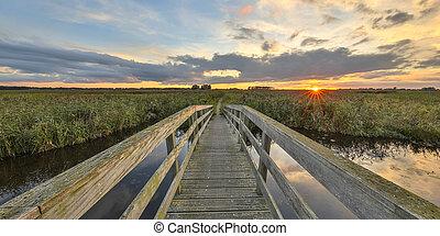 wooden bridzs, természetvédelmi terület, marshaland