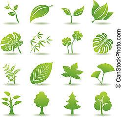 zöld, állhatatos, levél növényen, ikonok