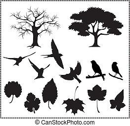 zöld, árnykép, madarak, vektor, fa