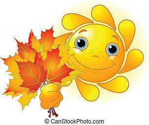 zöld, ősz, nap