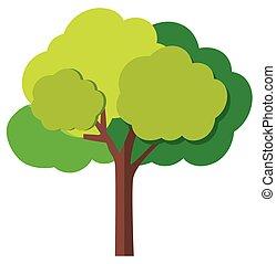 zöld fa, elágazik