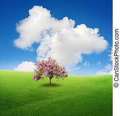 zöld fa, mező