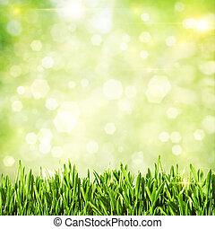 zöld, grass., természetes, elvont, háttér