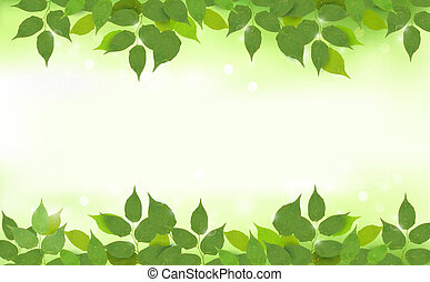 zöld, háttér, természet, zöld