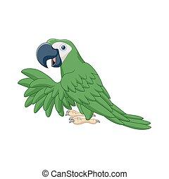 zöld, karikatúra, papagáj