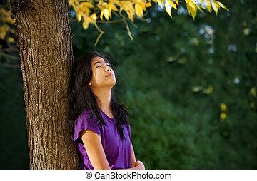 zöld, leány, tízenéves kor, látszó, ősz, vonzalom, fa, ellen, feláll