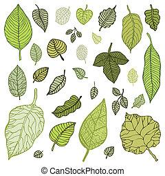 zöld, set., vektor, zöld, illustration.