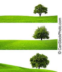 zöld, természet
