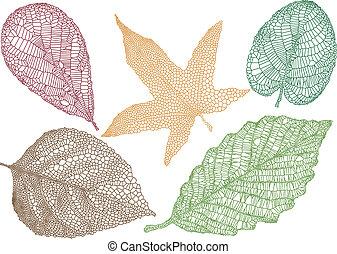 zöld, vektor, ősz