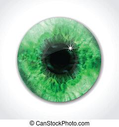 zöld, vektor, szem, szembogár, macro.