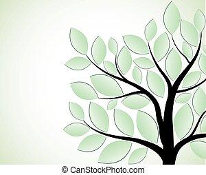 zöld white, fa, elszigetelt, háttér