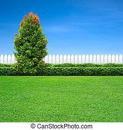 zöld white, fa, kerítés