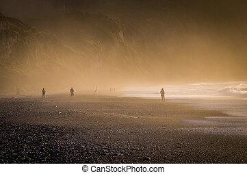zealand, ködös, napnyugta, új, hegyikristály tengerpart