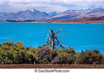 zealand, tó tekapo, hegyek, új, táj, kilátás