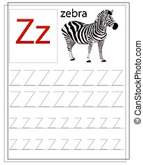 zebra., alphabet., gyerekek, tanul, angol, worksheet, irodalomtudomány