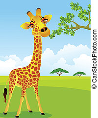 zsiráf, levél növényen, eszik
